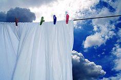laundry day by ^stillpug^ #EasyNip