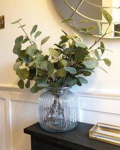 • EUCALYPTUS • I'm getting lots of messages about the eucalyptus in my hallway so I thought I'd do a post. It's faux from Ikea and £2.50 a… Glass Vase, Ikea, Messages, Plants, Home Decor, Texting, Flora, Interior Design, Text Posts