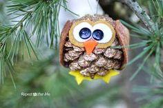 2013 Christmas Pinecone animal Crafts, Christmas owl Pinecone Crafts idea, 2013 Christmas Pine cone ornaments DIY by oldrose Christmas Pine Cones, Christmas Owls, Christmas Ornaments To Make, Handmade Christmas, Christmas Crafts, Christmas Time, Christmas Decorations, Pinecone Owls, Pinecone Ornaments