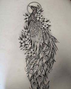 Image may contain: drawing S Tattoo, Pfau Tattoo, Back Tattoo, New Tattoos, Body Art Tattoos, Wrist Tattoo, Peacock Sketch, Peacock Drawing, Peacock Art