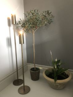 Interior, Faux Olive Tree, Stager, Pot, Dressing Your Table, Table Top, Faux