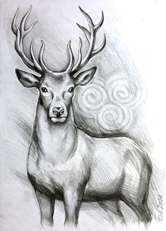 ORIGINAL deer art stag pencil drawing graphite home decor illustration animal art gift wall decor narteck on etsy Cool Pencil Drawings, Pencil Drawings Of Animals, Pencil Drawing Tutorials, Art Drawings Sketches, Easy Drawings, Drawing Ideas, Drawing Animals, Detailed Drawings, Love Drawings