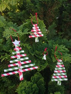 This time of year can often be filled with unnecessary plastic - fake trees, junky toys, Christmas Crackers, tacky decorations. Fake Trees, Holiday Crafts, Holiday Decor, Christmas Crackers, Christmas Decorations, Christmas Ornaments, Paper Straws, Sustainable Living, Zero Waste
