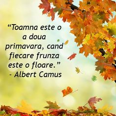 Albert Camus, Popular Girl, Online Games, Fashion Games, Qoutes, Verses, Messages, Autumn, Thoughts
