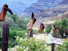 boots  on fence posts photos | Weathered Boots on Fence Posts, Imnaha River Canyon, Oregon, USA ...