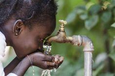 Los egipcios tenían un secreto que les permitía purificar y hacer potable el agua turbia.