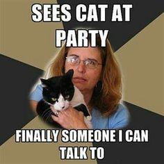 Crazy cat Lady parties