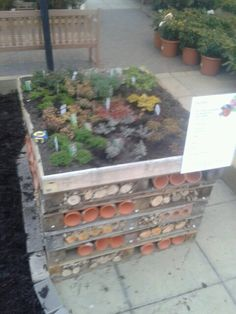 The bug hotel with planting ontop Bug Hotel, Year 2, Eyfs, Outdoor Play, Planting, Playground, Schools, School Ideas, Garden Ideas