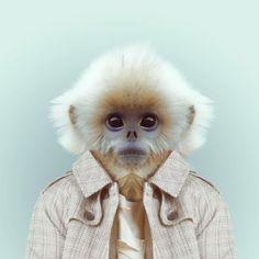 Fashion Zoo Monkey