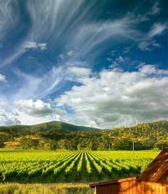 Napa Valley California - picture perfect!