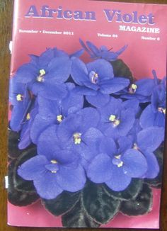 African Violet Magazine Volume 64 Magazine Back Issues- If you are not buying from me, your paying to much! Ebay Alternative Site.  Amazon alternative site.  BLOWOUT PRICES ON NOW!  You can also see me at ivanhoe.ecrater.com. with over 3000 low priced items-music, movies, magazine back issues, books, cookbooks,  baseball hats, cd's, vhs, cassettes and more.