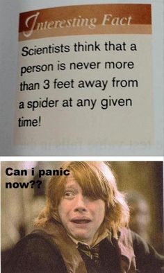 Spiders want me to tap dance. I don't want to tap dance..