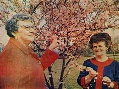 Fun photos from the Evergreen Arboretum's 50-year history.