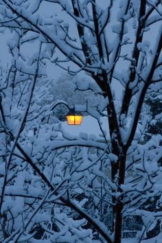 approfitta della tranquillità della stagione invernale per conoscere le mete più…