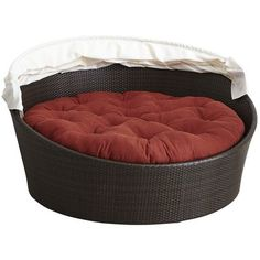 bed for  bubba in family room