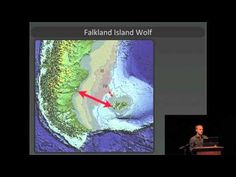 Dr. Greger Larson: Santa Barbara Symposium on Human Origins II