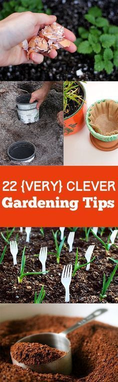 22 {Very} Clever Gardening Tips