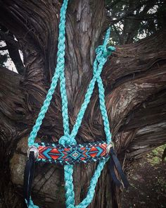 5 Turquoise Halters To Add To Your Tack Collection - COWGIRL Magazine