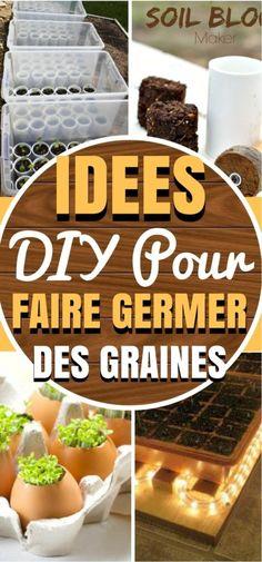 8 DIY de GENIE pour faire GERMER des GRAINES !