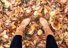 automne à londres