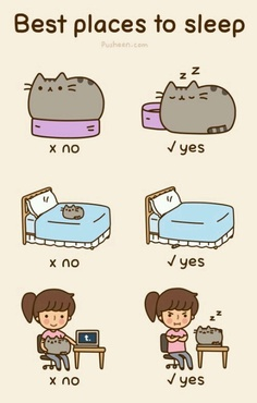 Best places to sleep, according to Pusheen
