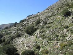 Genna Eidadi - Sentiero 105