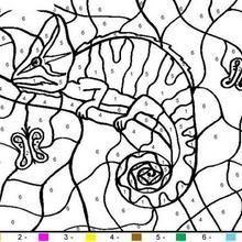 Chameleon Color By Number Coloring Page In 2020 Tiere Malen Malvorlagen Und Malen Nach Zahlen