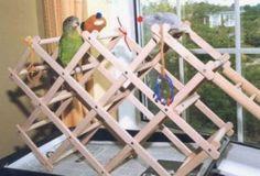 Wine Rack Bird Gym - PetDIYs.com