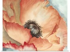 Megan Meagher Poster Print Wall Art Print entitled Watercolor Poppy II, None