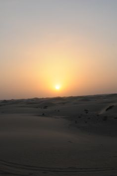 Dune Dinner Safari in Abu Dhabi -Arabian Adventures-