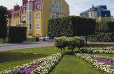 My home for the first six years of my life! Kuva Matti Tirri - Engelinaukio ja Juhani Ahon puisto, Pinta-ala 1 153 m2, Sunnittelija kaupunginpuutarhuri Svante Olsson.