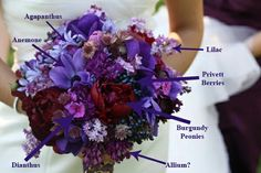 Purple buquet