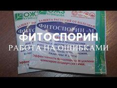 Подготовка почвы в теплице после зимы  Обеззараживание почвы Фитоспорином - YouTube