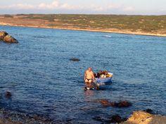 Grecia 2024- Paros- uomo porta barca attraversando a nuoto da un isola all' altra con i suoi bellissimi cani.. Ne ho contati più di 10!! Bellissimo