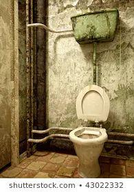 Toilet, Bathroom, Google, Beds, Water, Washroom, Flush Toilet, Full Bath, Toilets