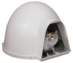 The door opening for both the cat and dog house is the same size.  I would have preferred the cat opening to be smaller.