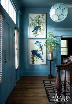 Boxy, Boring, Dark Living Room. Is There Any Hope? - laurel home | gorgeous entry via Atlanta Homes | Love this gracious entry and the monochromatic blue color scheme, the use of one color for walls and trim and over-scale bird - botanical prints