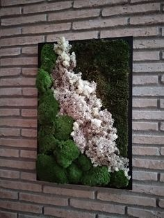 Moss Wall Art, Moss Art, Beautiful Flower Arrangements, Beautiful Flowers, Indoor Plant Wall, Moss Decor, Succulent Wall, Plant Painting, Arte Floral