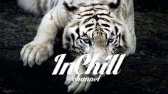 Izzy Bizu - White Tiger (Star Slinger Remix)