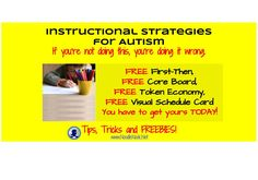 Instructional Strategies for Autism- If you're not doing this you're doing it wrong (with LOTS of FREEBIES)!