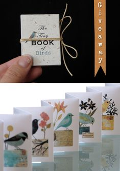 Geninne's tiny book of birds. Beautiful blog and artwork.  Easy to replicate idea with student drawings.
