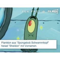 #funfact #spongebob #plankton