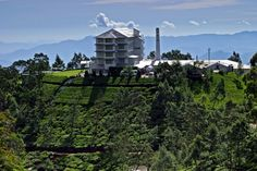 Sri Lanka Tea Factory Hotel Google Image Result for http://jezzbean.files.wordpress.com/2009/12/tea-factory-hotel-sri-lanka-600x400.jpg