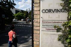 Budapesti Corvinus Egyetem Budai Campus, kertészettudományi, élelmiszer-tudományi, tájépítészeti kar, Villányi út