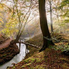 Herfst Elswout