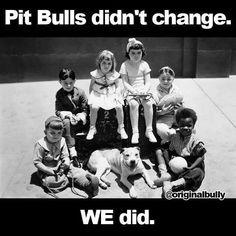 Pit Bulls didn't change. WE did.