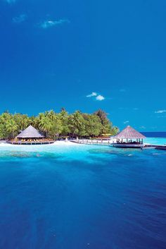 Ideal for lovers, divers and environmentalists (props to you if you're all three!) #Maldives