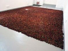 Anya Gallaccio's 10.000 Dying Roses -Beautiful decay