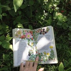 pinterest// floweravecs
