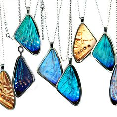 Blue morpho and others butterfly jewelry from Papillon Belle